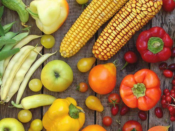 naturalbio-verdura