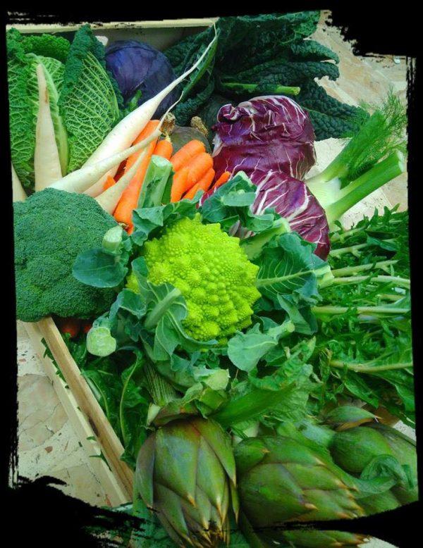 bioetico-verdura