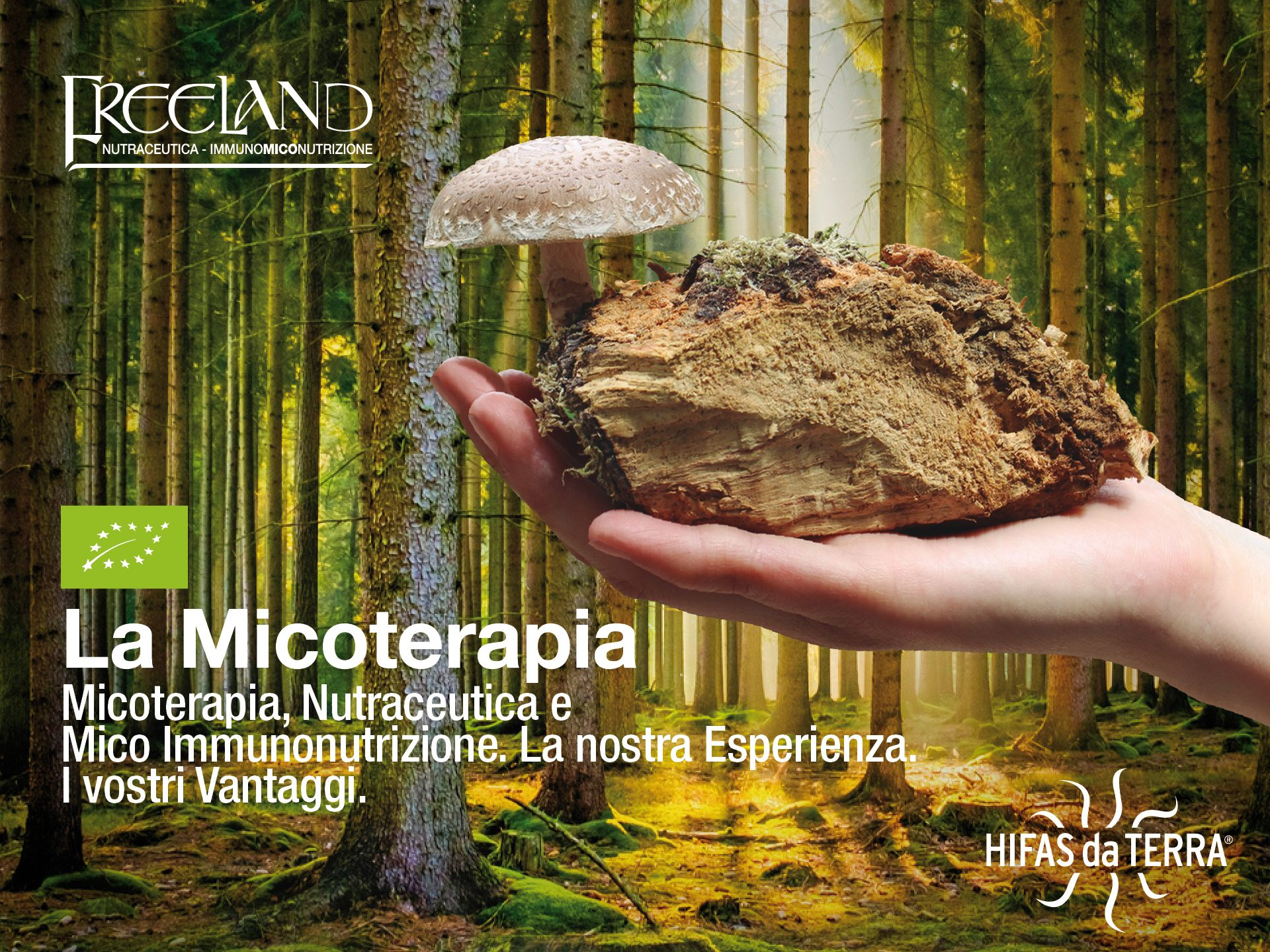freeland-micoterapia