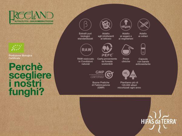 freeland-infografica
